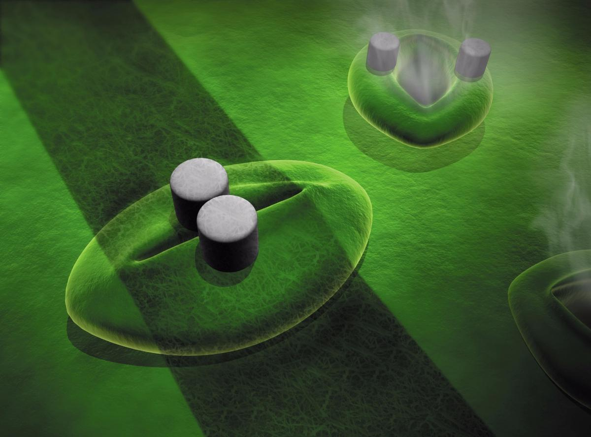 An illustration depicting how one of the sensors might be deployed across an individual stomata
