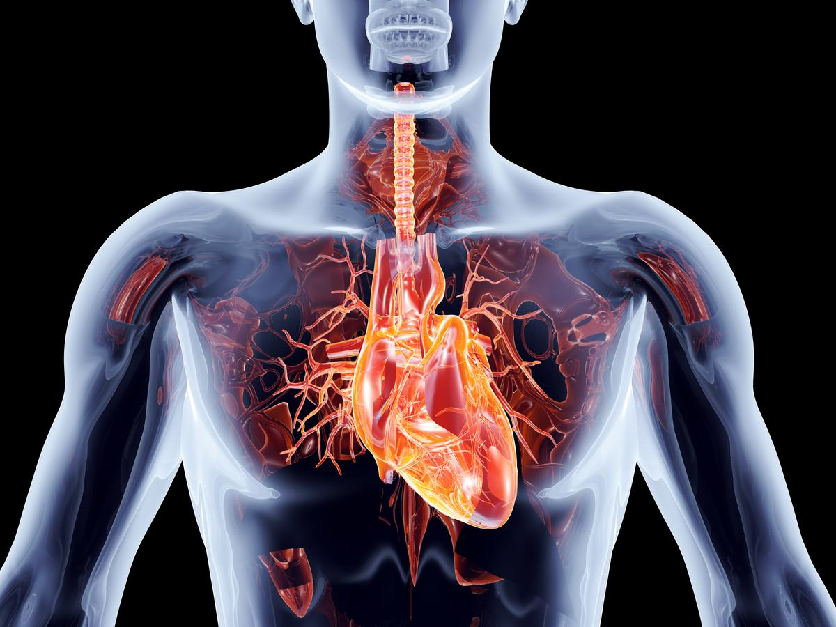 Scientists have succeeded in transplanting the first lab-grown heart cells into a human patient