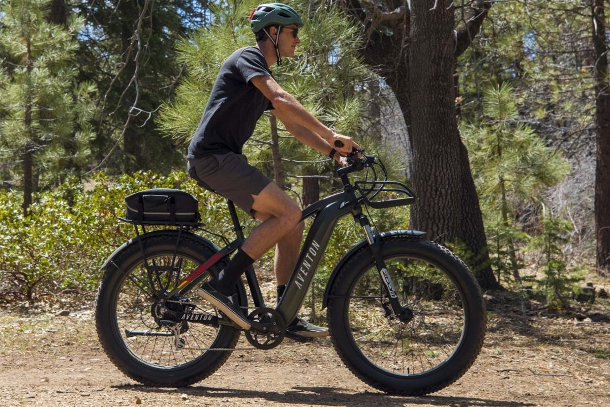 Those funky 4-inch fat tires combine with a Zoom Forgo fork to smooth out the ride