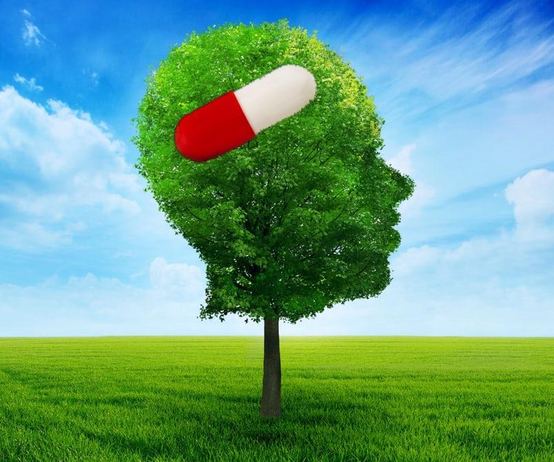 Could we fight Alzheimer's with medication the way we fight high cholesterol? New research offers hope