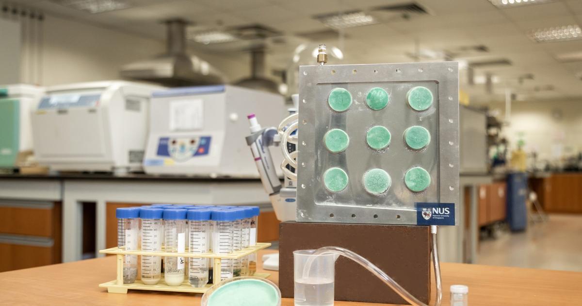 Sponge-like aerogel turns airborne vapor into drinkable water - New Atlas