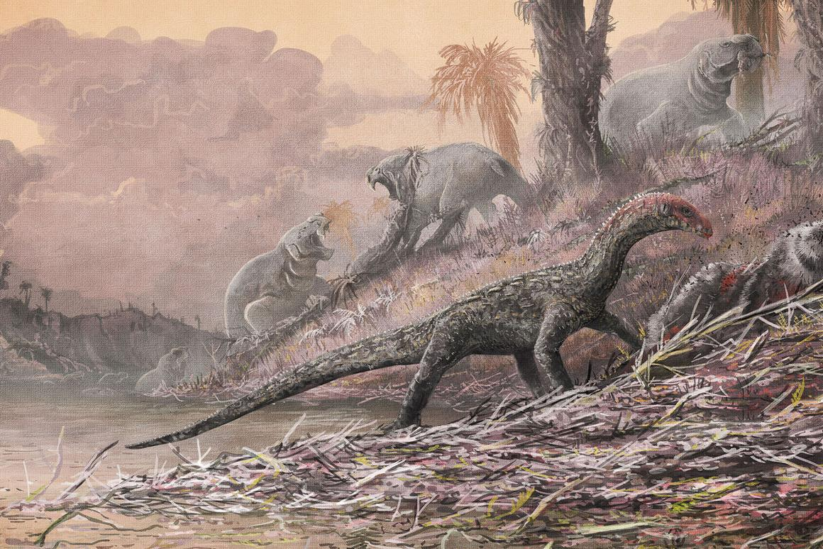 Reconstruction of Teleocrater rhadinus feasting on a deep relative of mammals, Cynognathus