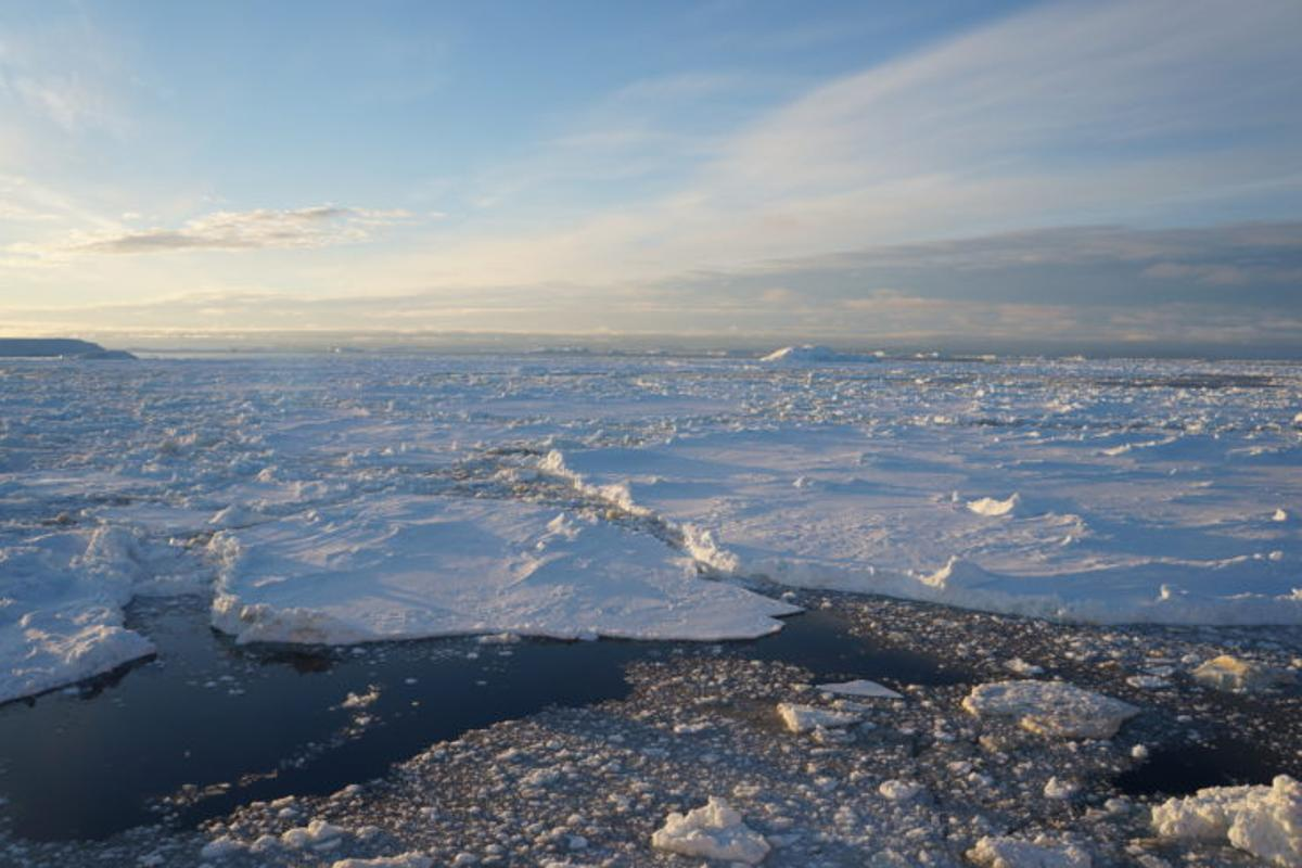 Sea ice in the Weddell Sea has reduced by one third over the last five years