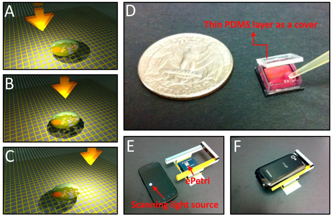 (A-C) The target cell's shadow incrementally shifts across the sensor pixels (D) the ePetri prototype (E-F) the ePetri imaging platform