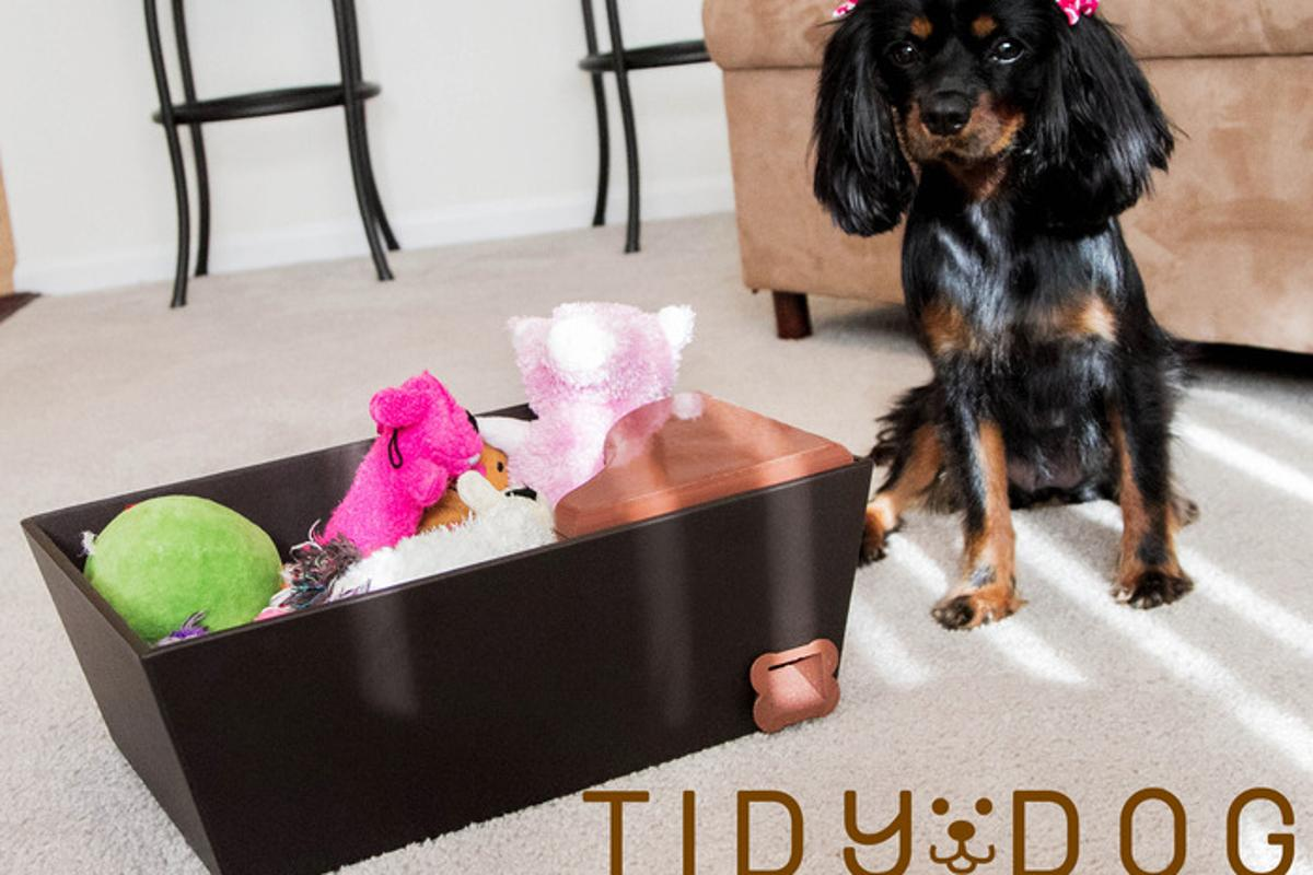 Tidy Dog is designed to dispense treats when a dog puts away its toys