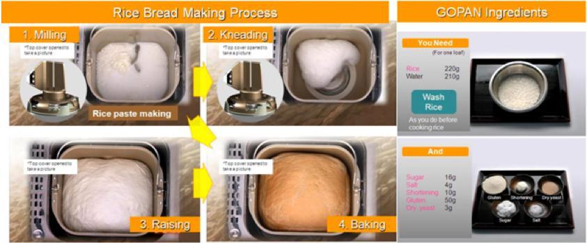 GOPAN's process