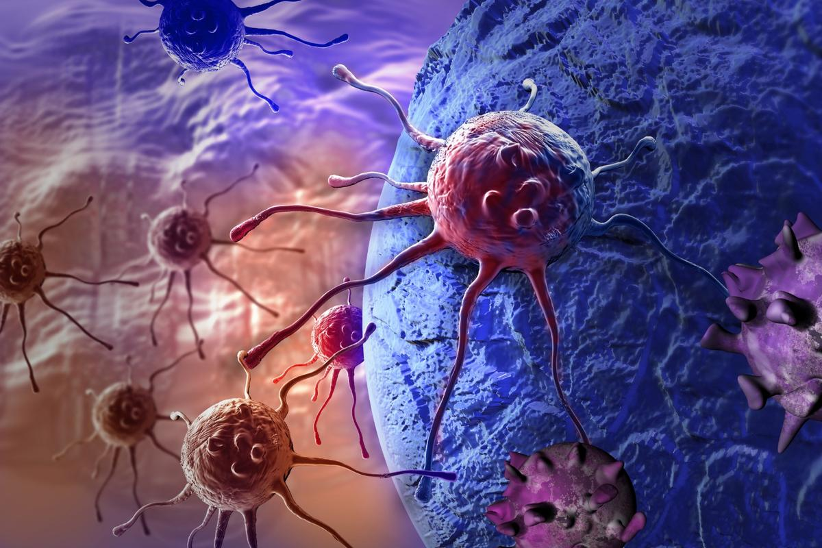 Scientists have come up with a new way to enhance the body's immune system in its fight against cancer