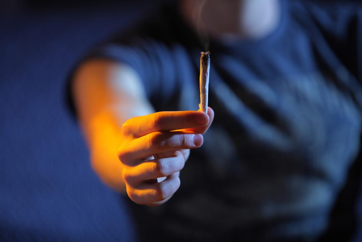 Despite a new meta-studyfinding a strong association between adolescent marijuana use and later-life depression, experts question whether the link is causal