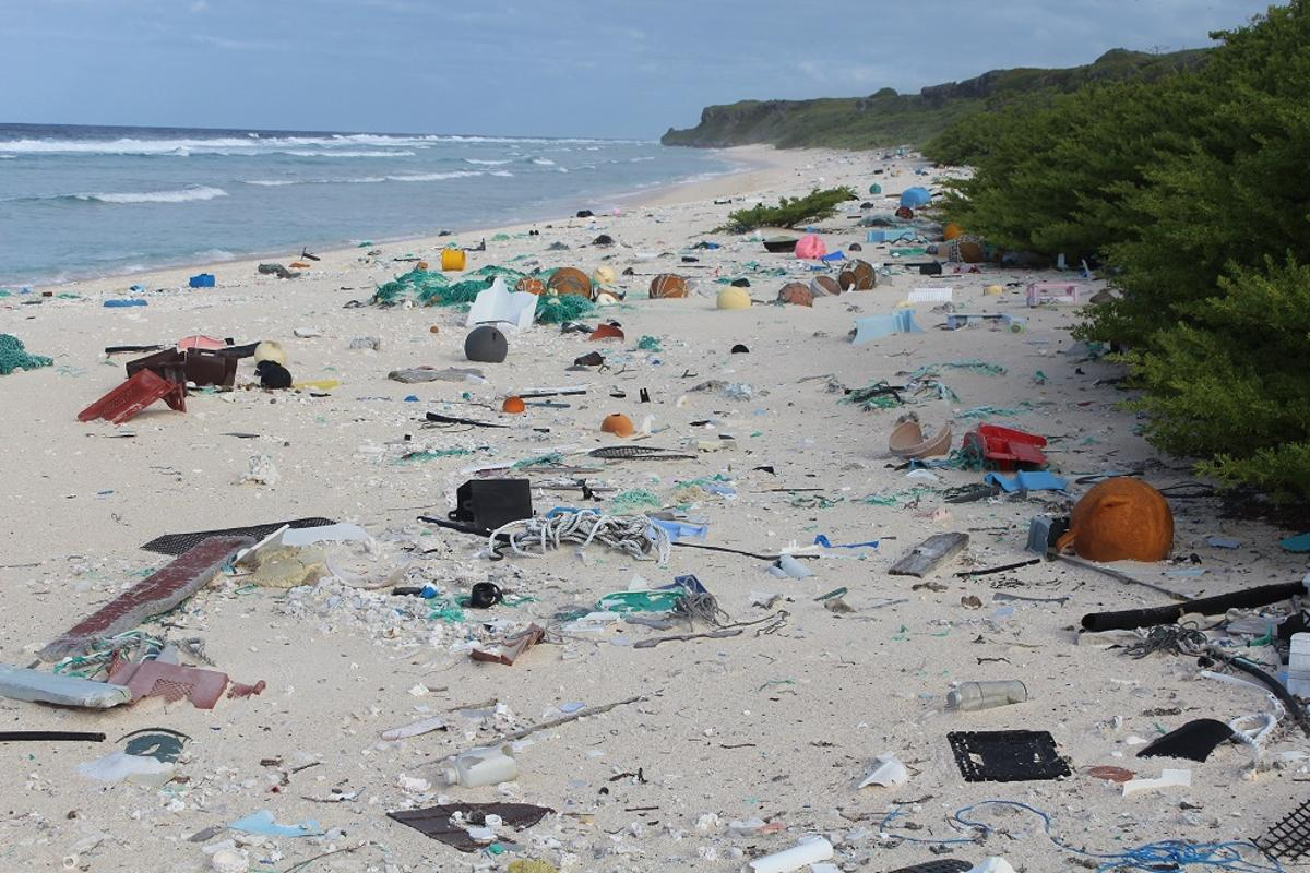 The team calculated a plastic trash concentration of 671 pieces per square meter (10 sq ft)