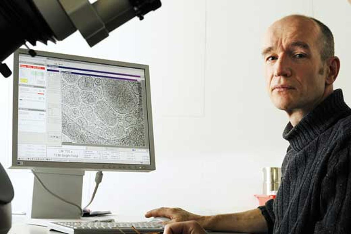 Dr. Nico Sommerdijk and colleagues have created bone in a laboratory setting