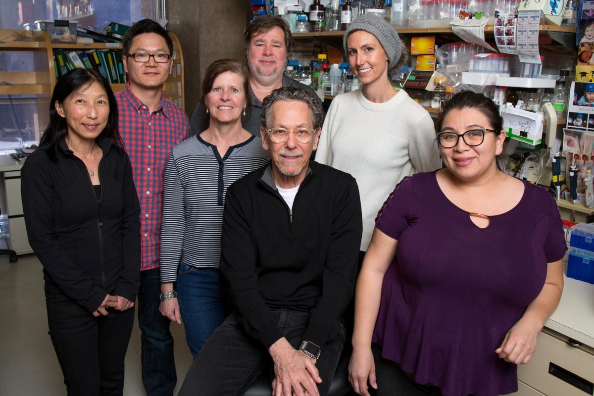 The Salk Institute research team behind the study