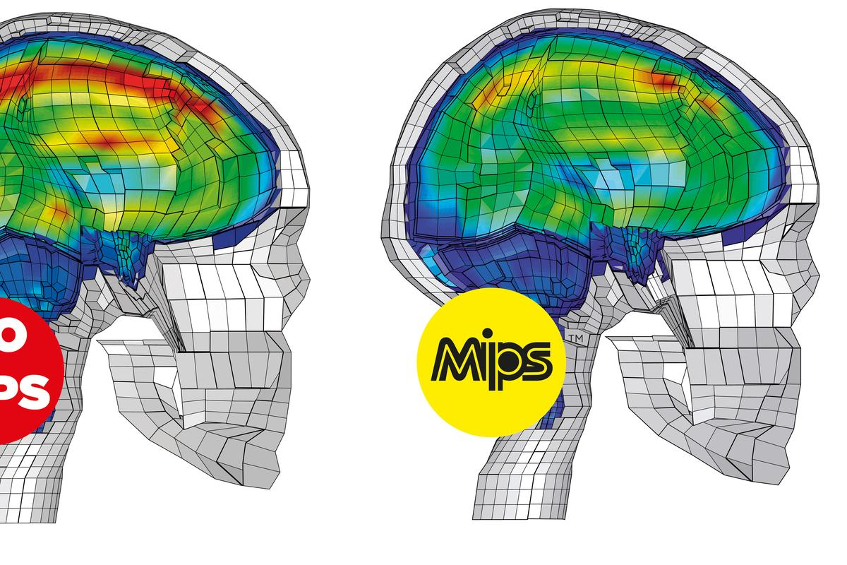 MIPS is designed to decrease forces on the brain during oblique impacts