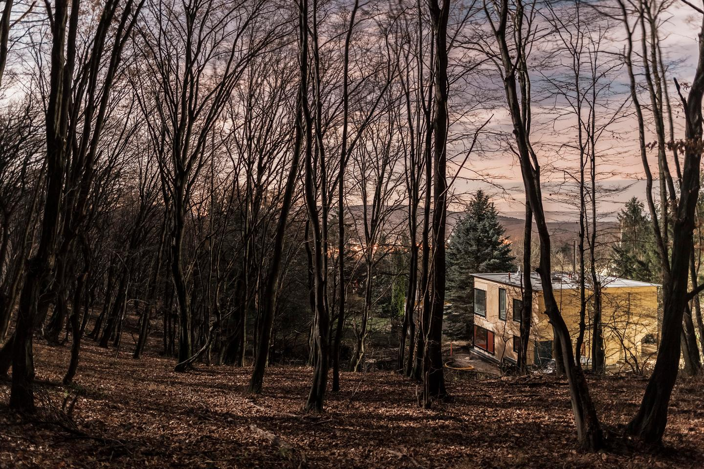 Black Magic House is located in a forest on the outskirts of Budapest (Photo: Zsolt Batár)