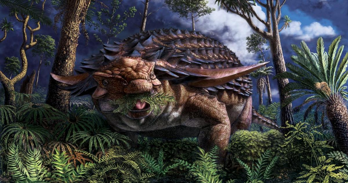 Dinosaur stomach contents reveal last meal and time of death