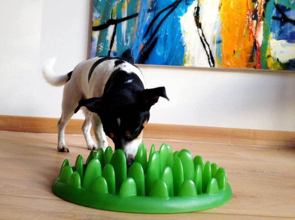 """Green's 43 blades of safe plastic """"grass"""" make it difficult for dogs to get a proper grip on the food"""