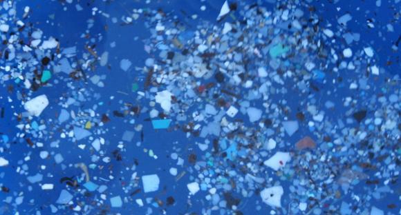What an oceanic plastic vortex looks like