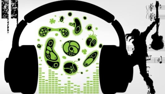 Music sounds better with bacteria: a scientist has swapped graphs for music in order to represent data on microbes