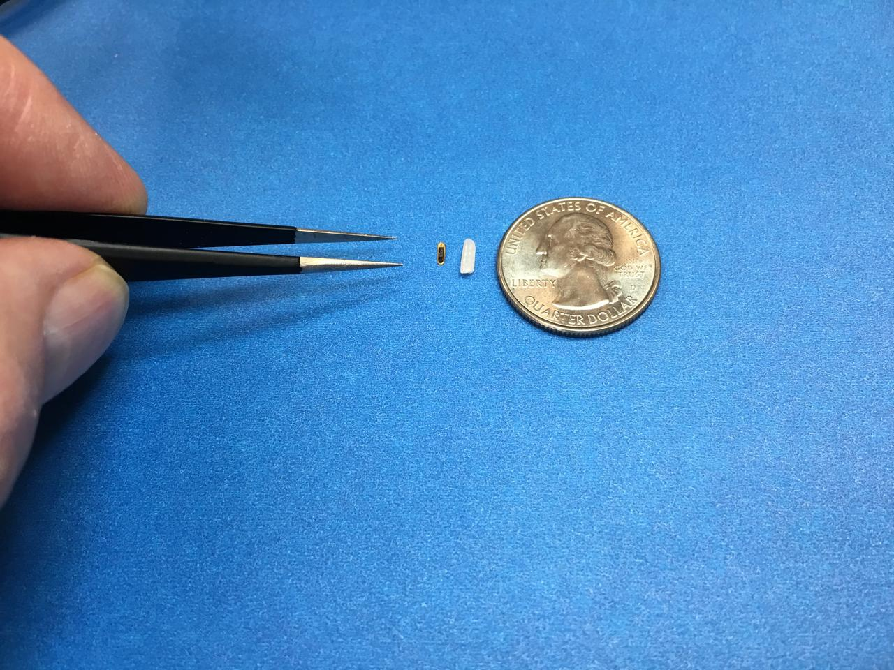The implant, made by California-based firm Injectsense, with a grain of rice and a US quarter for scale