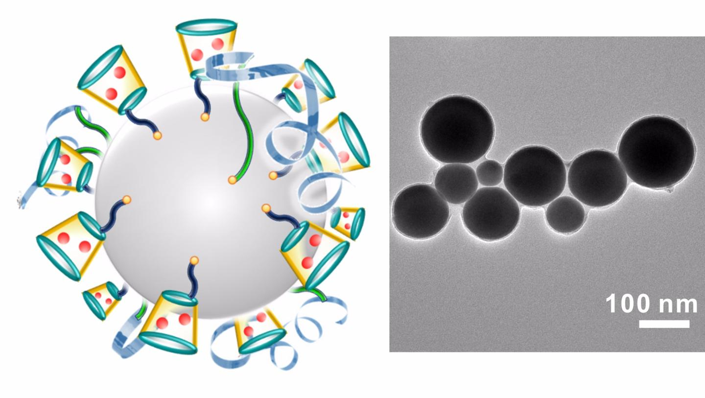 On left is a schematic illustration of liquid-metal 'nano-terminators.' The red spheres are Dox. At right is a representative TEM (Transmission electron microscopy) image of liquid-metal nano-terminators.