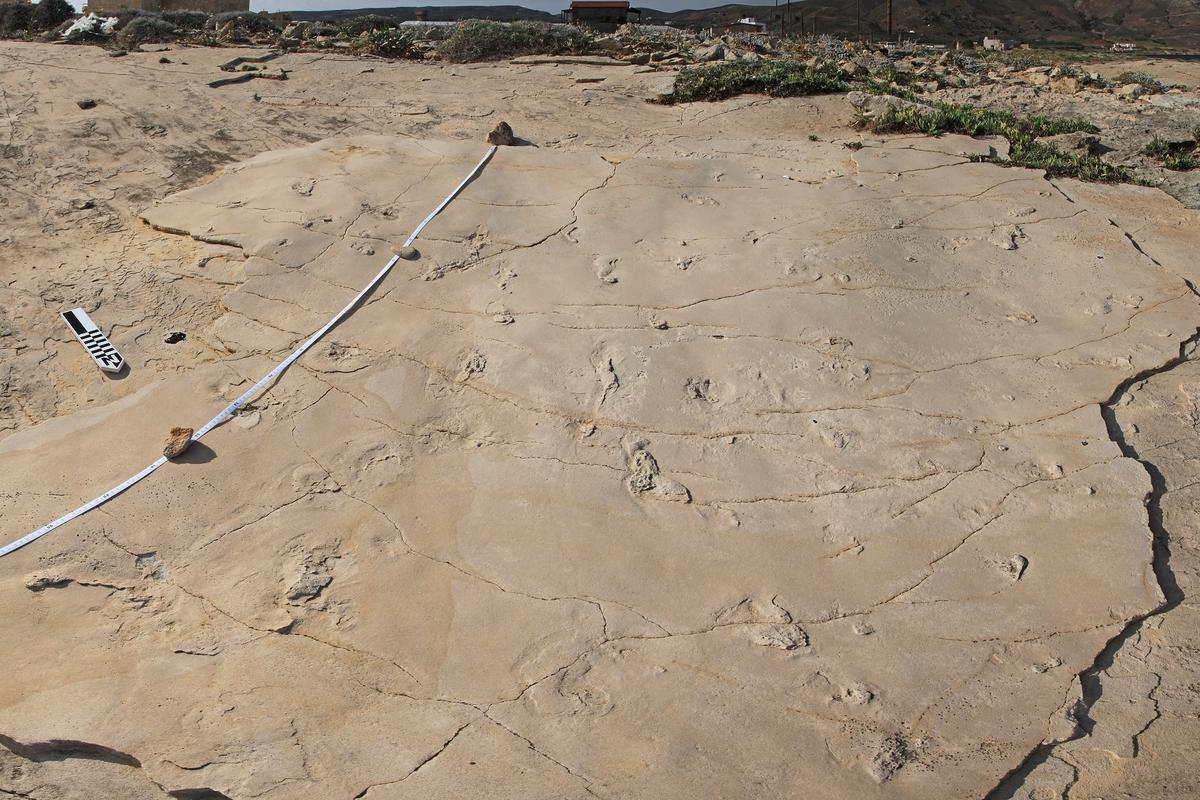 A set of fossilized human-like footprints in Greece may end up rewriting the story of human evolution