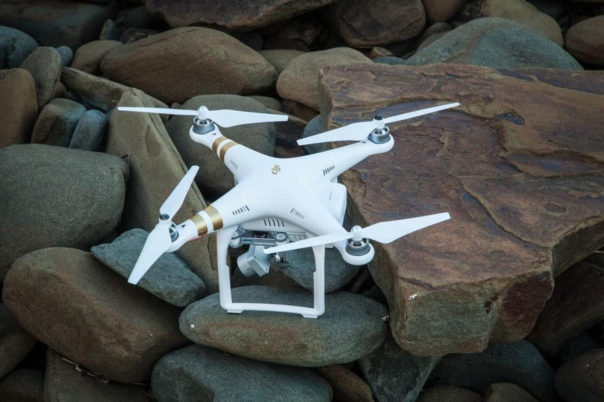 A DJI Phantom 3 will be used in the protest