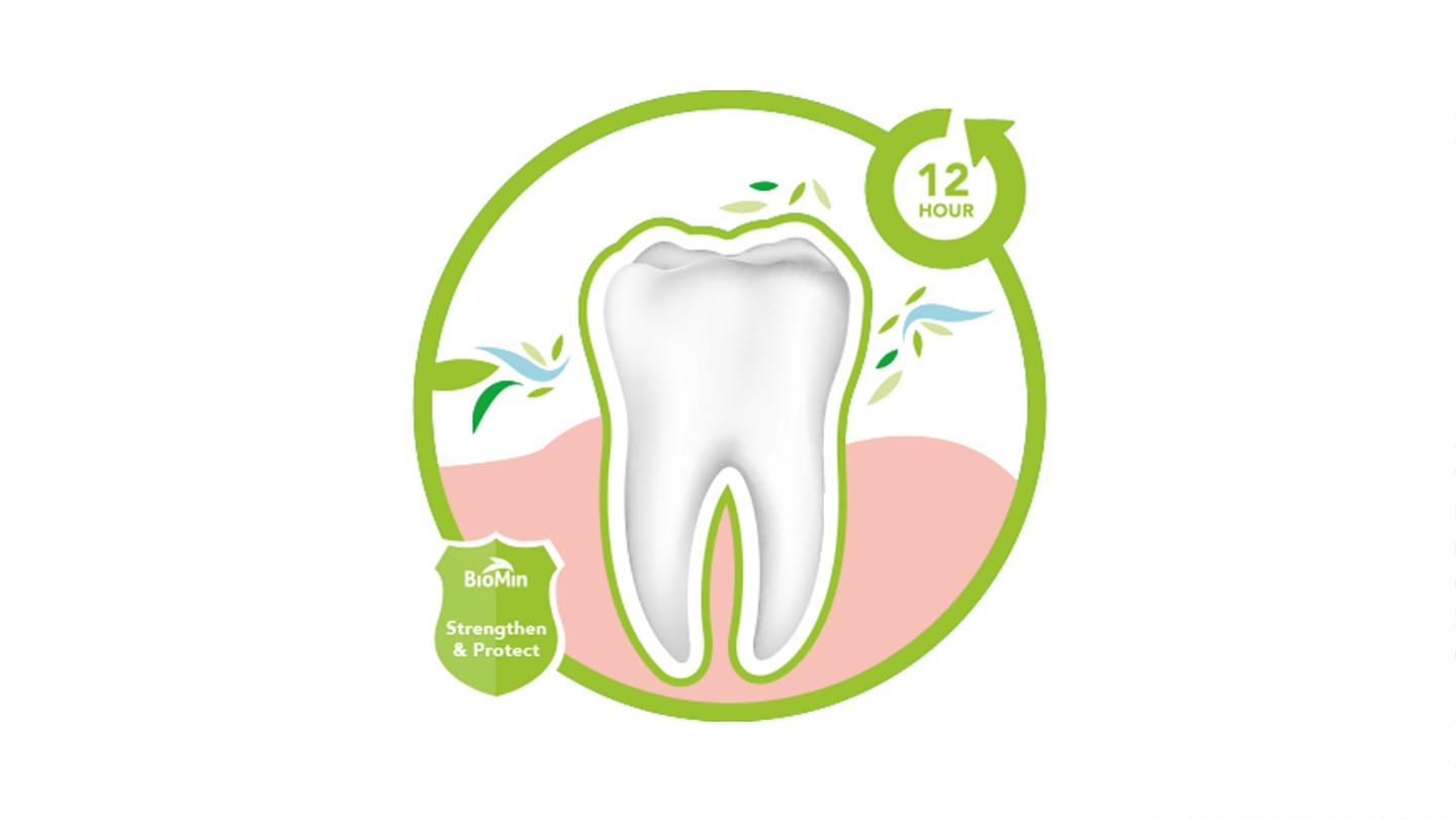 Whereas normal toothpastes wear off after only a couple of hours, BioMin pastes work for 8-12 hours after brushing, with the flouride – which is resistant to the acid found in things like soft drinks – forming a protective layer over the enamel