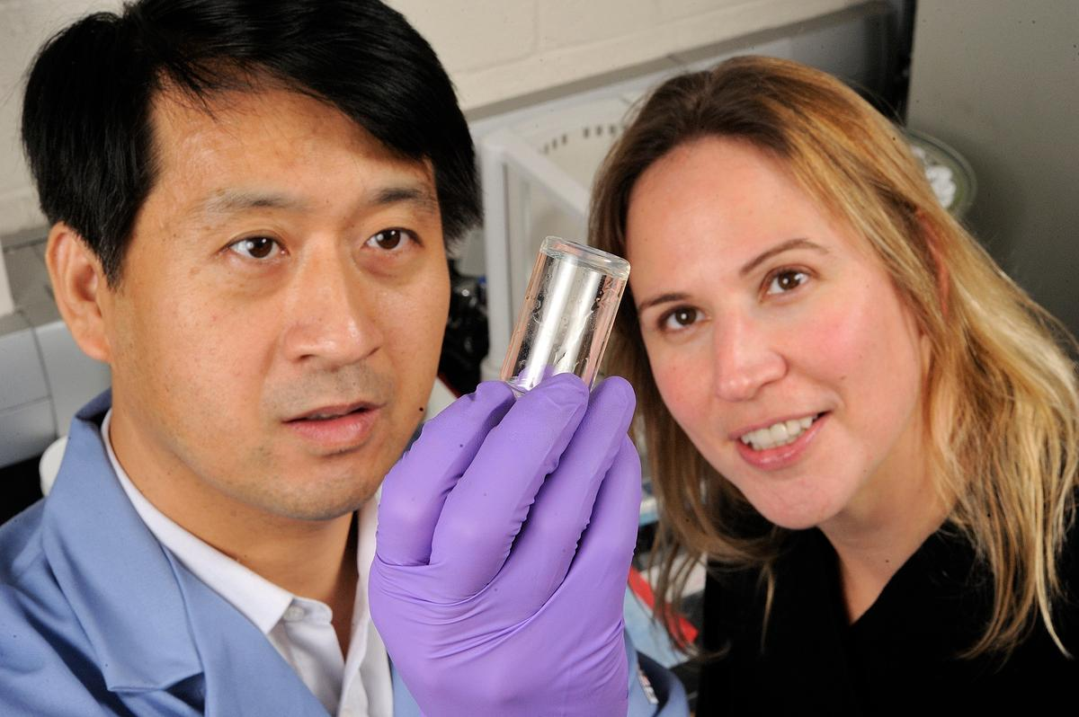 Postdoctoral fellow Guoming Sun (left) and Sharon Gerecht, an assistant professor of chemical and biomolecular engineering, helped develop the burn-healing hydrogel