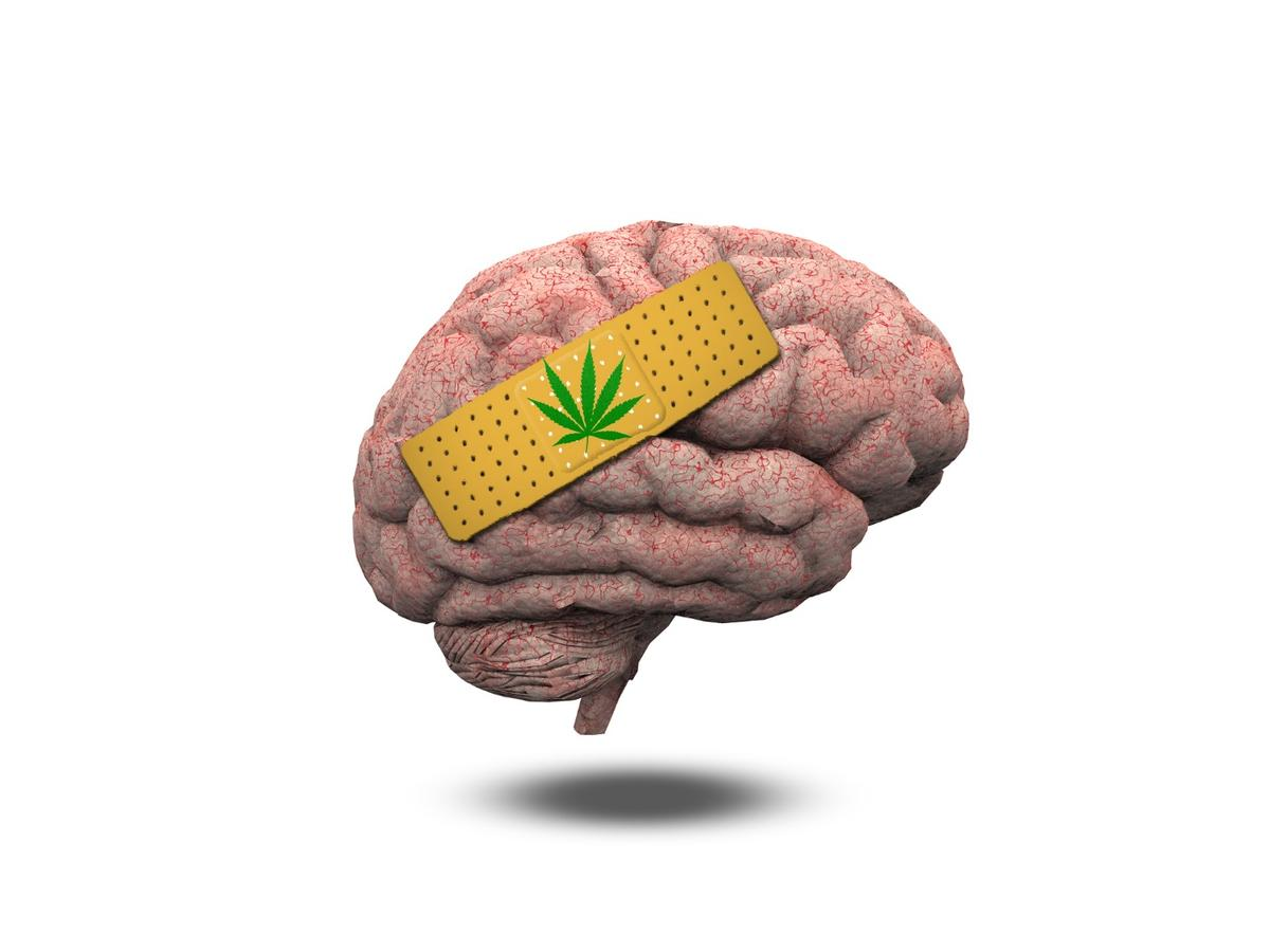 It was discovered in mouse experiments that anti-inflammatory drugs could protect against any potential cognitive damage from THC administered at a young age