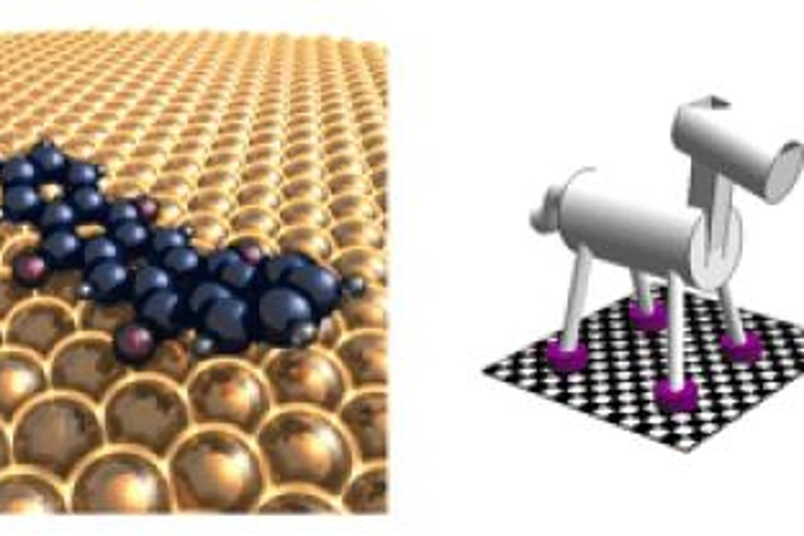 A UC Riverside study have made important steps toward making artificial walking molecular machines a reality.
