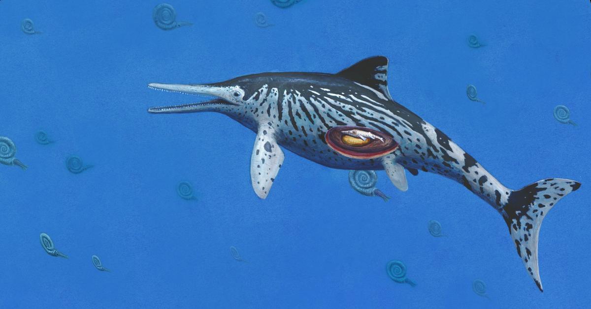 An artist's impression of the Ichthyosaurus somersetensis