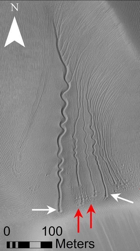 This images shows grooves in the sand made by carbon dioxide chunkson a dune in Matara Crater, Mars, with the red and white arrows pointing to pits formed when the frozen gas sublimates