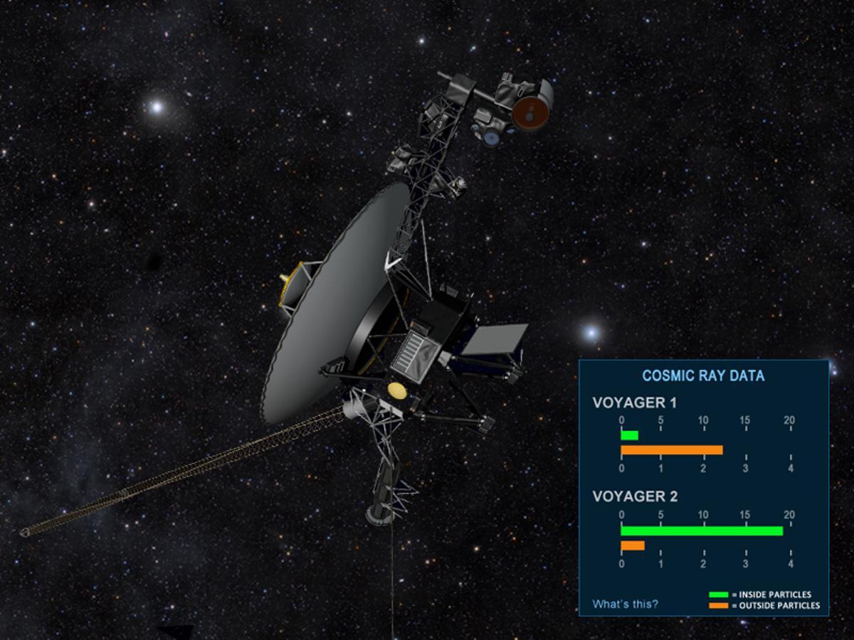 The Voyager gauge (Image: NASA)