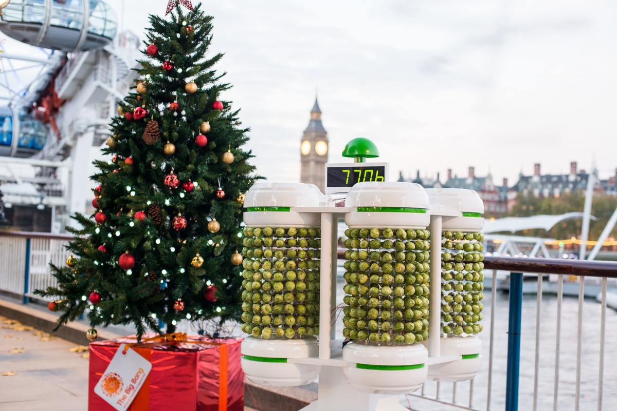 The Brussels sprout battery, with the Christmas tree