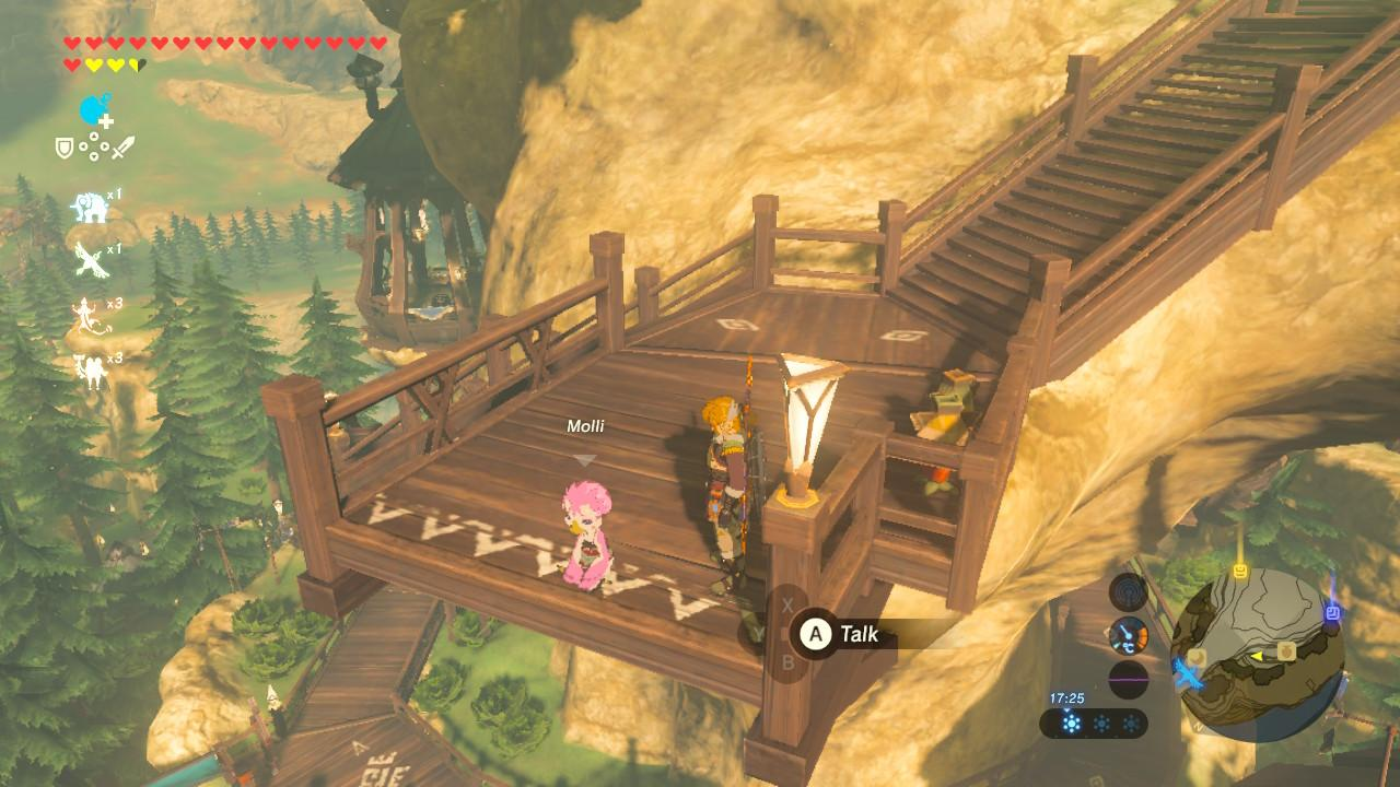 You'll need to find Molli in Rito Village to get the quest