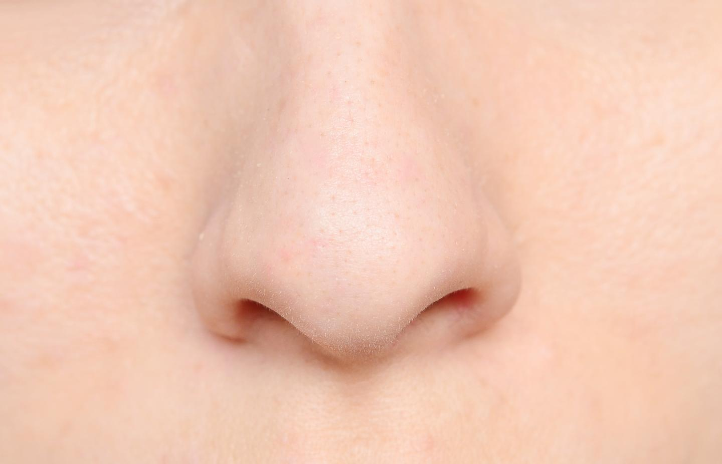 Nasal septum cartilage cells can easily be coaxed into reproducing, providing a patient with their own source of replacement joint cartilage (Photo: Shutterstock)