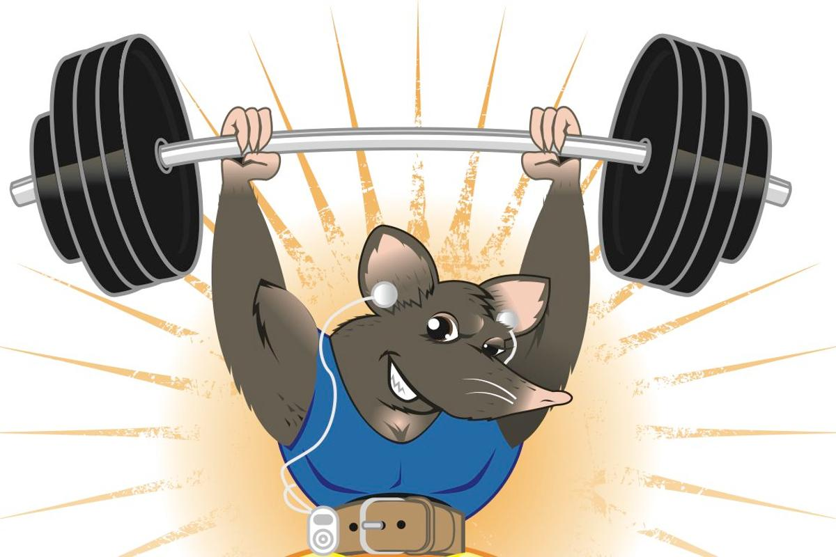 The Scripps Research Institute has developed a drug that duplicates the benefits of exercise – at least for mice (image: Shutterstock)