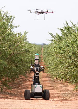 Robots working on an almond farm in Australia