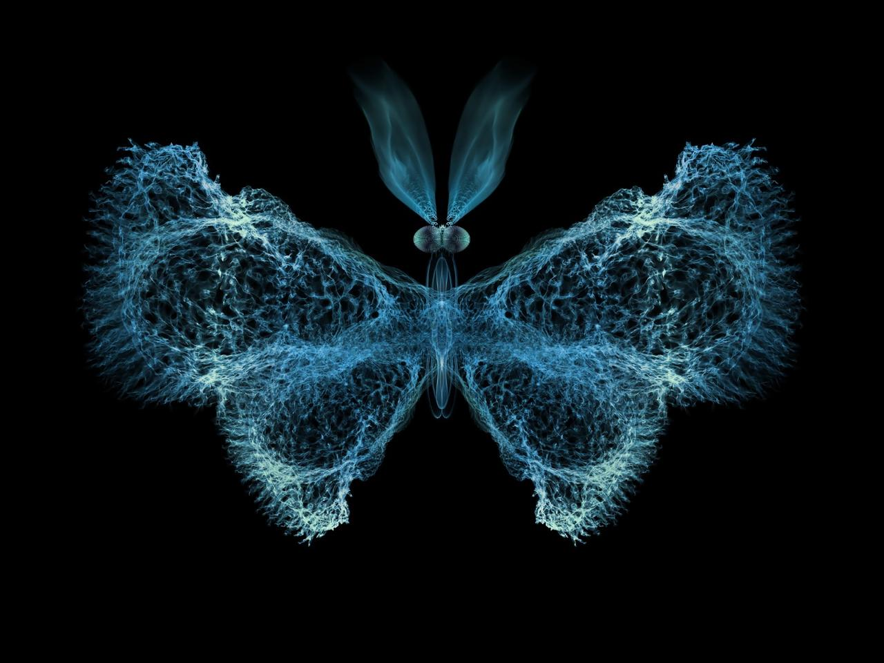 "Researchers have found evidence that chaos theory – best known through the ""butterfly effect"" – plays a big role in the immune system"
