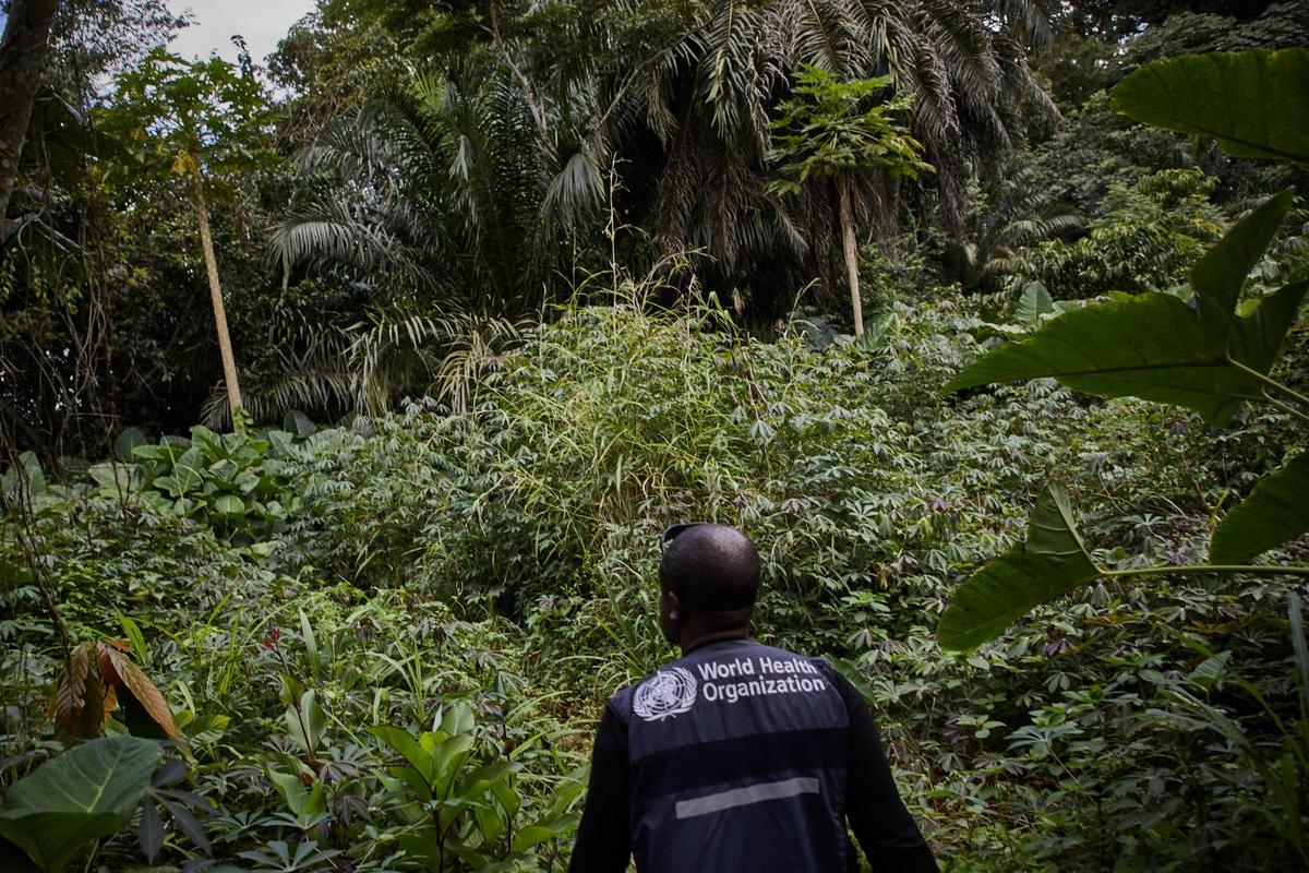 The World Health Organization investigating an outbreak of Ebola in North Kivu in the Democratic Republic of the Congo