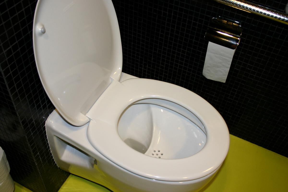 A NoMix toilet, which separates liquid and solid waste (Photo: Judit Lienert)