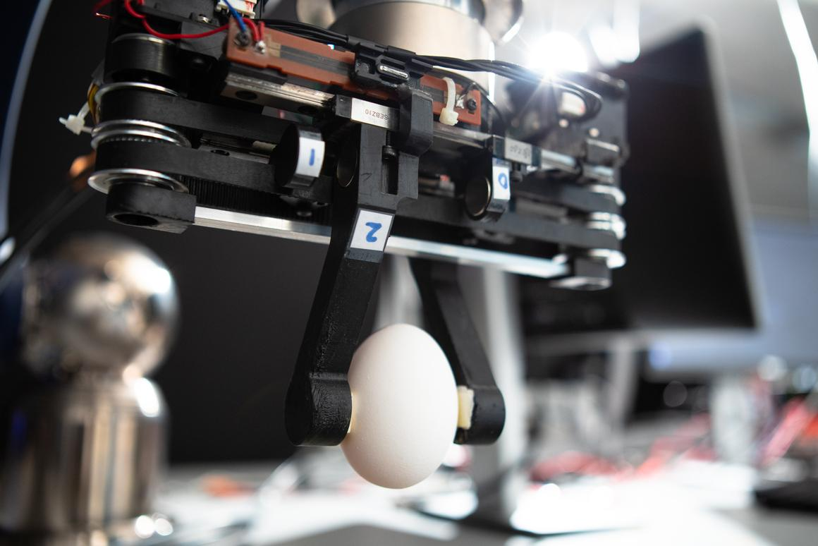 The prototype gripper grasps an egg
