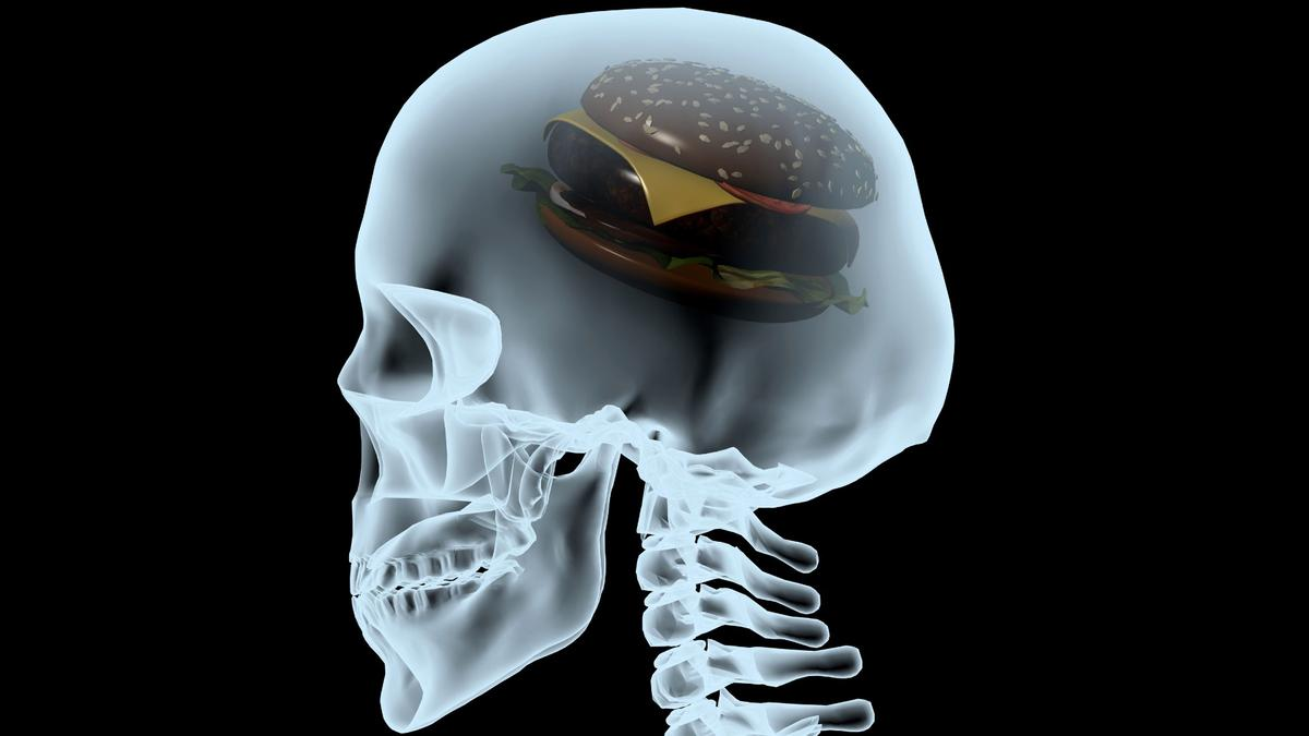 A new study demonstrates how fatty acids can enter the brain and disrupt signaling pathways that lead to depression
