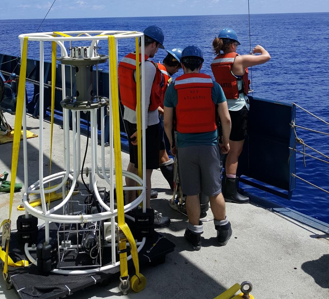 A team has discovered microbes in the Pacific Ocean that can breathe arsenic