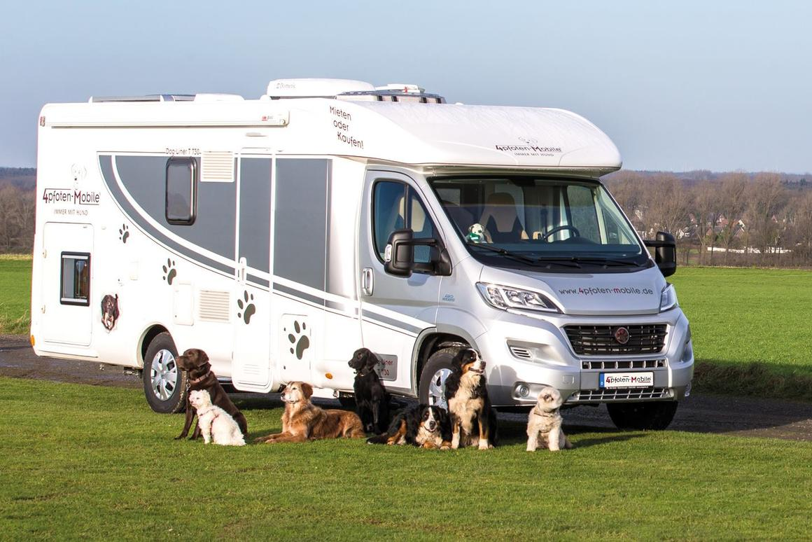 Four Paws solar-equipped motorhome keeps dogs comfy in a
