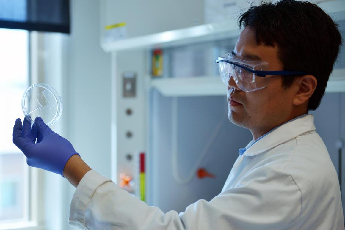 Researcher Qingkun Liu holds up samples of the new transparent aerogel, which could make windows better insulators
