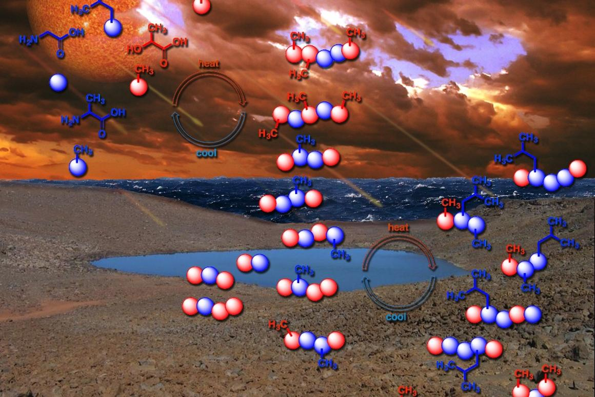 To study how life might have originally emerged on Earth,researchers have foundthatdrying out and rewetting the primordial soup could help molecules form longer and more advanced peptides
