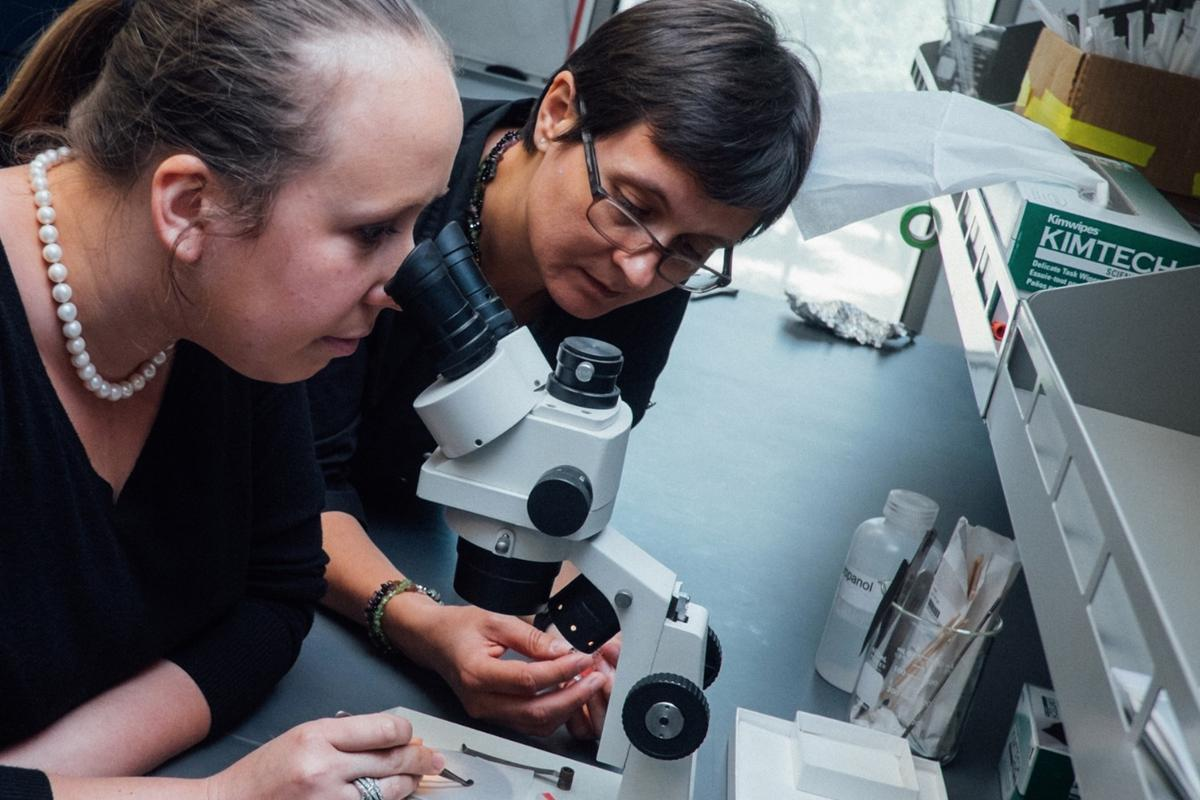 Emilia Morosan (right) led the study that uncovered the tough new material