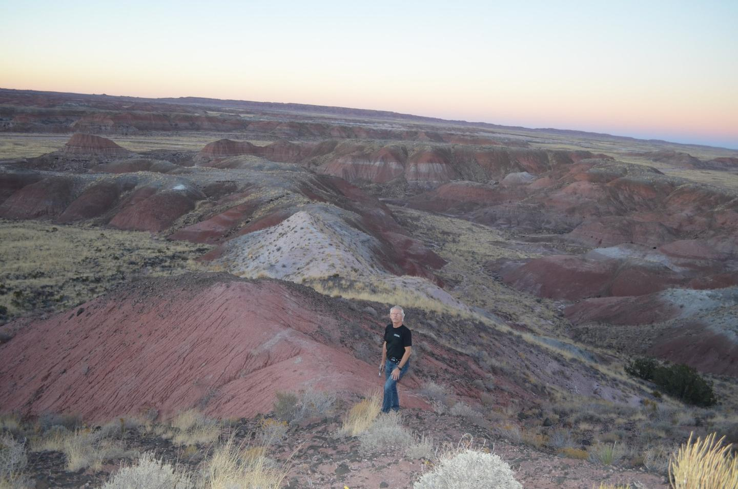 The researchers drilled rock cores from the Petrified Forest National Park in Arizona