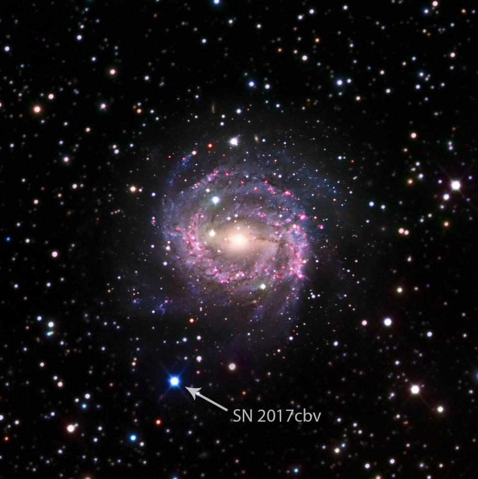 Supernova SN 2017cbv is located in the galaxy NGC 5643, about 55 million light years away, making it one of the closest supernovae recently discovered