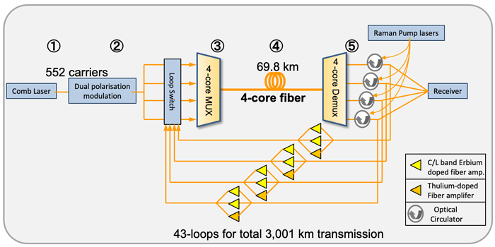 A schematic of the new transmission system